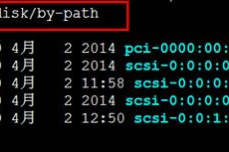【linux】云VPS linux系统数据盘挂载教程