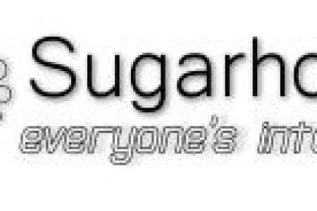 棉花糖(sugarhosts)VPS疯狂之作-全场VPS1折