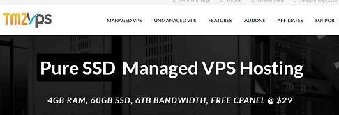 tmzVPS美国vps服务器 1核 2g内存 50g硬盘 洛杉矶 月付8刀